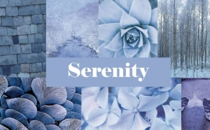 Serenity, la couleur tendance 2016