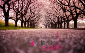 Le Guide des expos du Printemps par Tendance Sociale